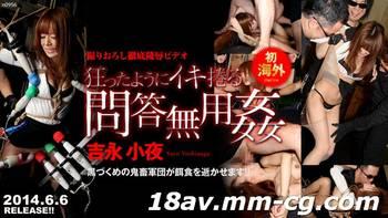 Tokyo Hot n0956