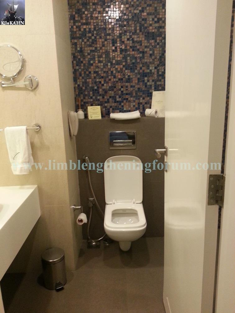 fern toilet